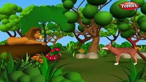 The Foolish Donkey | हिंदी कहानी | 3D Moral Stories For