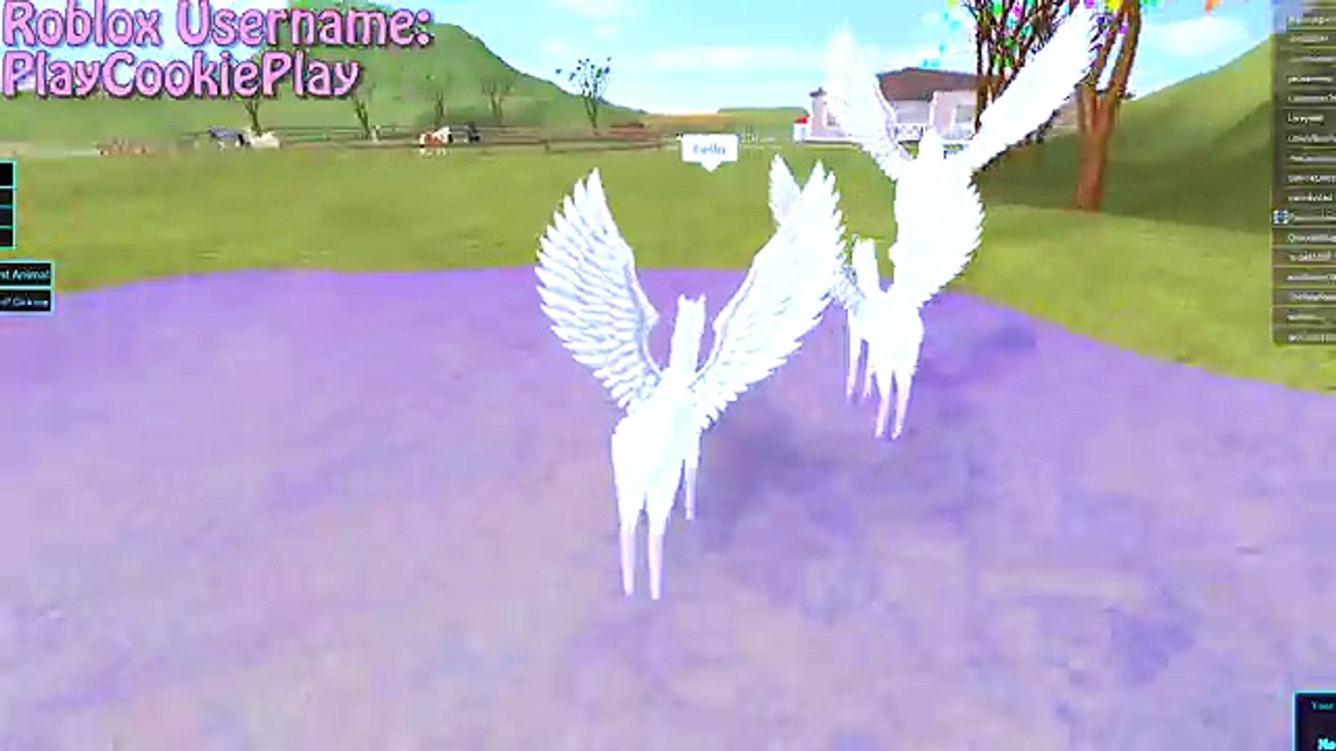 Baby Pegasus Foal Friends Horse Heart Lets Play Online Roblox Horses Game Video Dailymotion