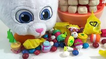 PLAY DOH Doctor Drill N Fill Cavities Playset with The Secret Life of Pets Dentist Snowball TUYC