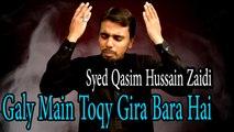 Syed Qasim Hussain Zaidi - Galy Main Toqy Gira Bara Hai