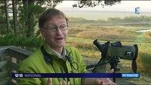 Baie de Somme : à la découverte des oiseaux du parc du Marquenterre