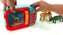 Learn Names And Sounds of Wild Zoo Animals/Pretend play Microwave/Schleich,Safari Ltd toys/Kids Fun