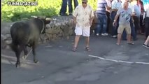 Funny videos 2017 - Stupid people doing stupid things - Bull Fighting - Bull Fails accident