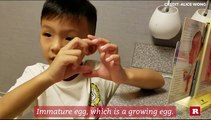 Boy genius Anson Wong explains the female reproduction system | Anson's Answers