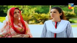 Adhi Gawahi Episode 27 HUM TV Drama - 4 October 2017