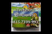 0815-7109 993 | Harga BioCypress Balikpapan | Obat Herbal Asam Urat