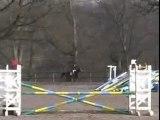 16 mars 2006, CEZ Rambouillet, entrainement jeunes chevaux