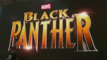 New 'Black Panther' Movie Trailer May Be Coming Soon