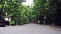 Balade en Ahooga dans La Forêt de Soignes