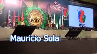 WBC President Mauricio Sulaiman announces three days of mourning in wake of lv shooting-lsRwHMTZOwY