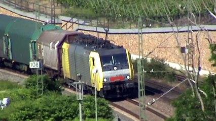 Züge beim Bopparder Hamm am Rhein, Dispolok 189, 3x 185, 2x 101, 460