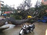 Bengaluru Rain : heavy rains wreak havoc again in Bengaluru and some areas are flooded