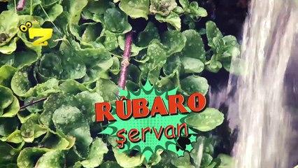 Zarok TV - Rûbaro