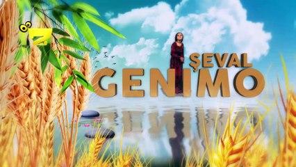 Zarok TV - Genimo