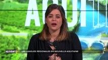 Aquithèmes - Nos langues régionales: le basque et l'occitan: survie et vie