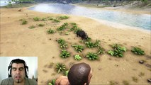 ARK Survival Evolved Woolly Rhino vs T-Rex Batallas dinosaurios gameplay español