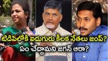 Five YSR Congress Party Leaders To Join TDP Soon టిడిపిలోకి ఐదుగురు కీలక నేతలు జంప్| Oneindia Telugu