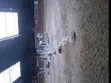 concours cso poney