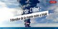 Mer de chine : l'étendue de la marée noire a triplé