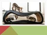 Cat Scratching Lounge - dnclifestyle.com.au