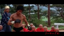 BRUCE LEE vs BRUCE WAYNE! - Dark Knight & Red Dragon Showdown. Jeet Kune Do☯Batmans Ninjutsu Keysi