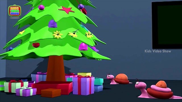 Interesting Facts About Christmas Trees - Why Do We Put Up Christmas Trees During Christmas