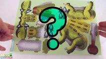 Learn Dinosaurs Name Sounds Dinosaurs - Learn Names Of Dinosaurs - Dinosaur Puzzle(Ankylosaurus)