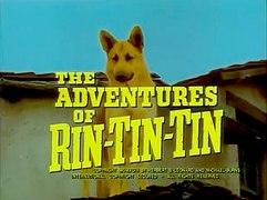 Las aventuras de Rin Tin Tin Capitulo 1 Series 50 60