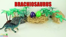 Learn Dinosaurs Name Sounds Dinosaurs - Learn Names Of Dinosaurs - #7 Dinosaur Eggs Surprise