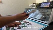 Silhouette Cameo vs Cricut Explore vs Brother Scan n Cut - video