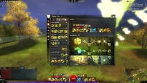 Guild Wars 2: Heavy Direct Damage Ranger Power Build with