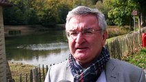 René Collin à propos de la forêt de Soignes