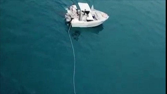 Huge 15-Foot Great White Shark Drags Fishing Boat in Terrifying Drone Footage