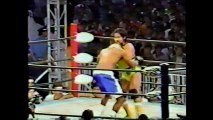 Grigory Verichev/Tarzan Goto vs Brian Sayodill/Leon Spinks (FMW September 19th, 1992)