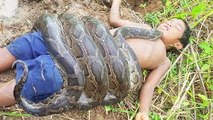 Terrifying!! Brave Sister And Brother Catch Extremely Big Snake While Fishing ( Part 3)
