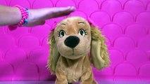 Perrita Lucy juguete - Lucy la mascota inteligente -Lucy perrita interiva - Lucy puppy dog toy