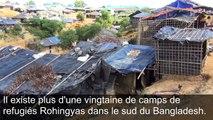 Les rescapés Rohingyas du camp de Kutupalong