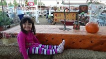 4 Year Old Went to Pumpkin Patch on the Rancho Farm Animals petting ZOO