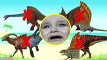 Wrong Shadow Dinosaurs! Learn Jurassic Dinosaurs Name Nursery Rhymes. Dinosaurs Rex Toys for Kids.