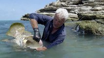 Jeremy Wade Has a Very Painful Hands on Experience With a Giant Grouper River Monsters