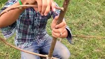 Awesome Quick Bird Trap Perch Snare Trap - How To Make A Bird Trap - The Best Bird Traps (Work 100%)