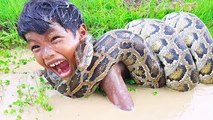 OMG! Brave Little Brothers Catch Extremely Big Snake While Fishing