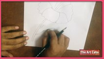 Learn To Draw Flower Draw A Hibiscus Video Dailymotion