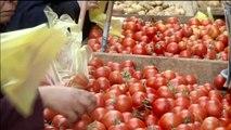 Égypte, HAUSSE DES EXPORTATIONS AGRICOLES