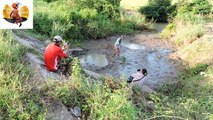 Amazing Fishing at Pailin Province - Cambodia Traditional Fishing - Khmer Net Fishing (Part 277)