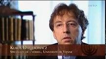 l'Histoire du peuple juif - 4 - l'étoile de David
