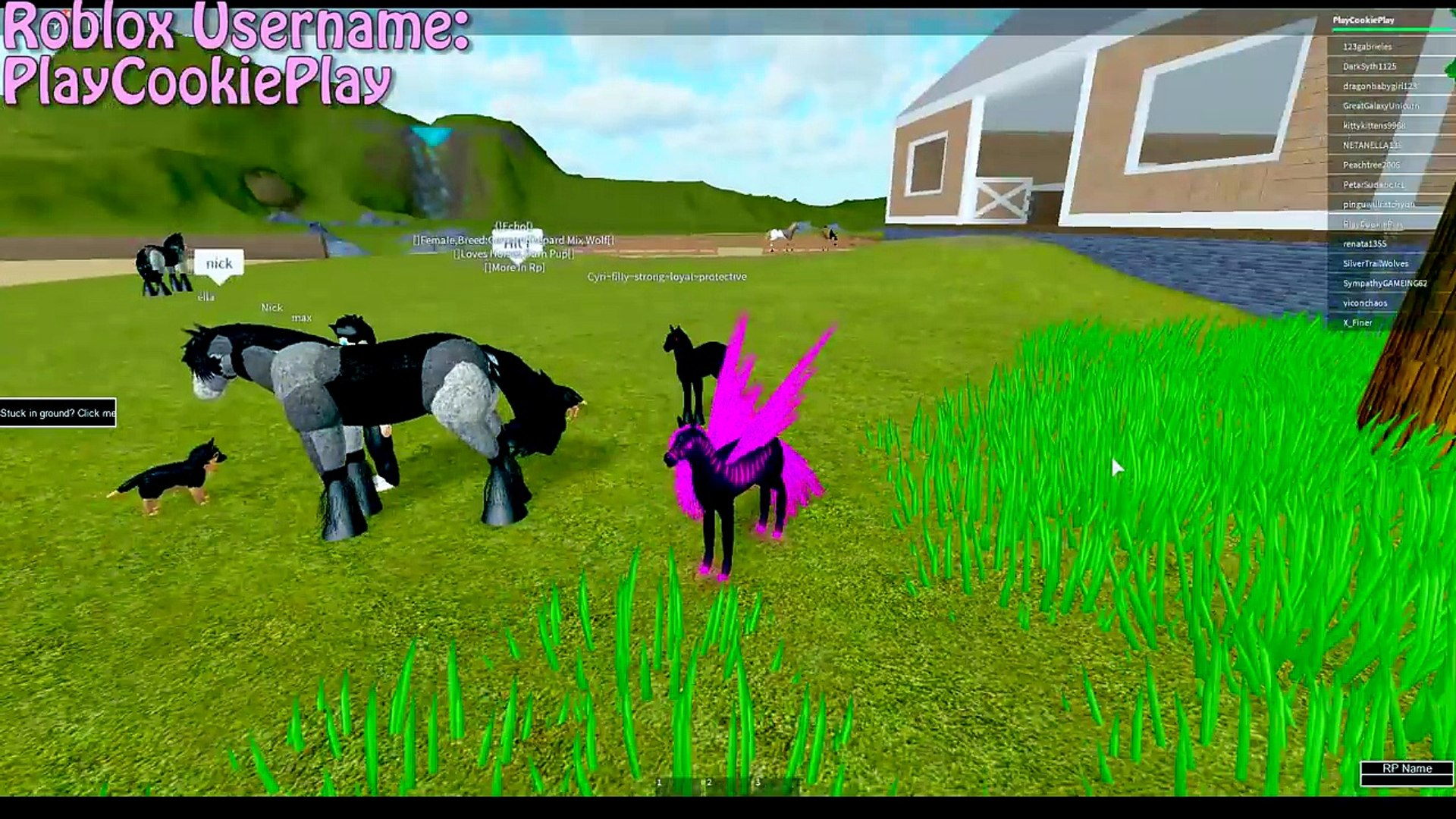 Honeyheartsc Roblox Videos Humans In Horses World My Little Pony Mlp 3d Lets Play Online Roblox Horse Games Video Dailymotion