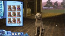 Lets Play The Sims 3: Pets! [Part 2 -- Create a Pet]