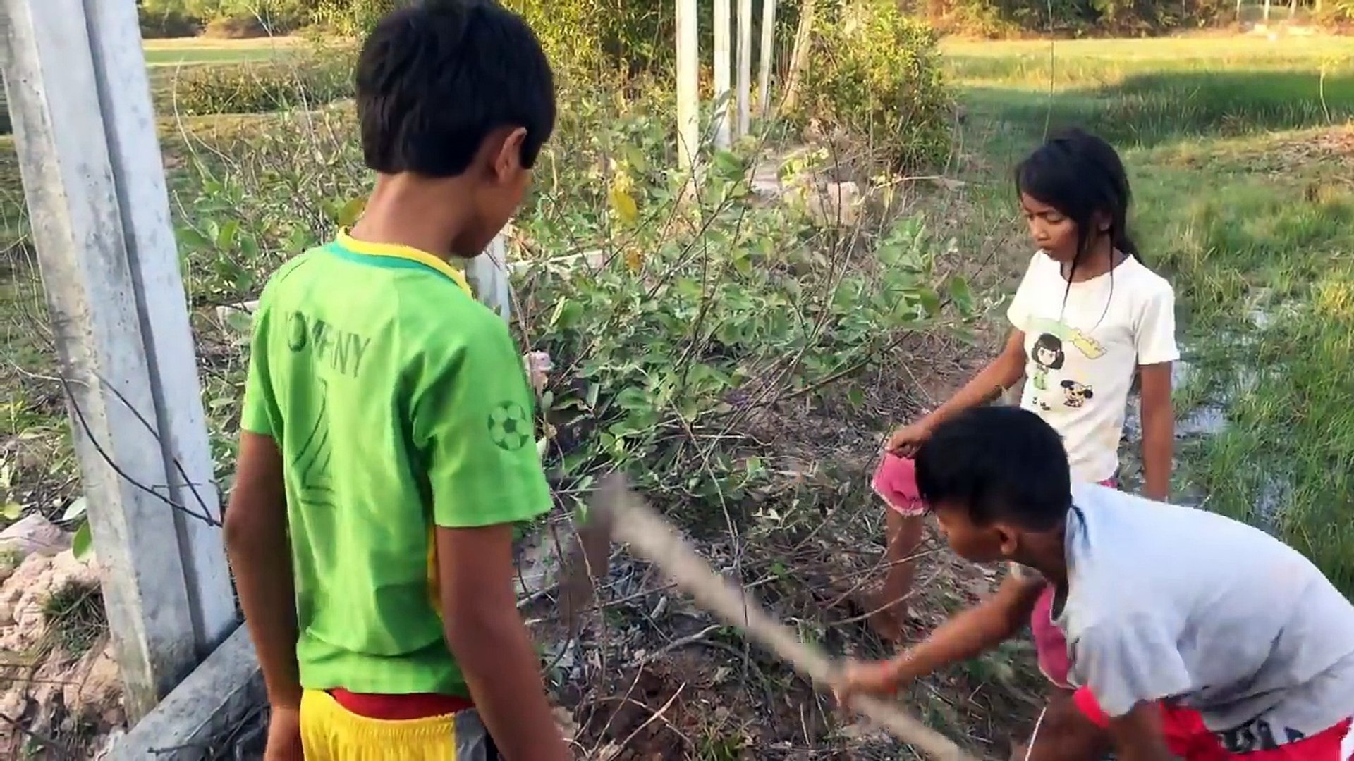 Wow! Amazing Children Catch Big Water Snake In Hole - Catch Snake In Cambodia