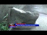 Seekor Gajah Liar Ditemukan Mati di Pedalaman Aceh Timur - NET24